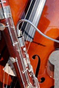 Bild zu Musikschule total: Junge Künstler musizieren