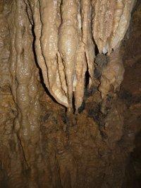 Bild zu Ausflug in die Binghöhle und zum Outdoor-Spielplatz nach Streitberg