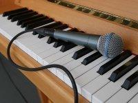 Bild zu Voices and Pianos