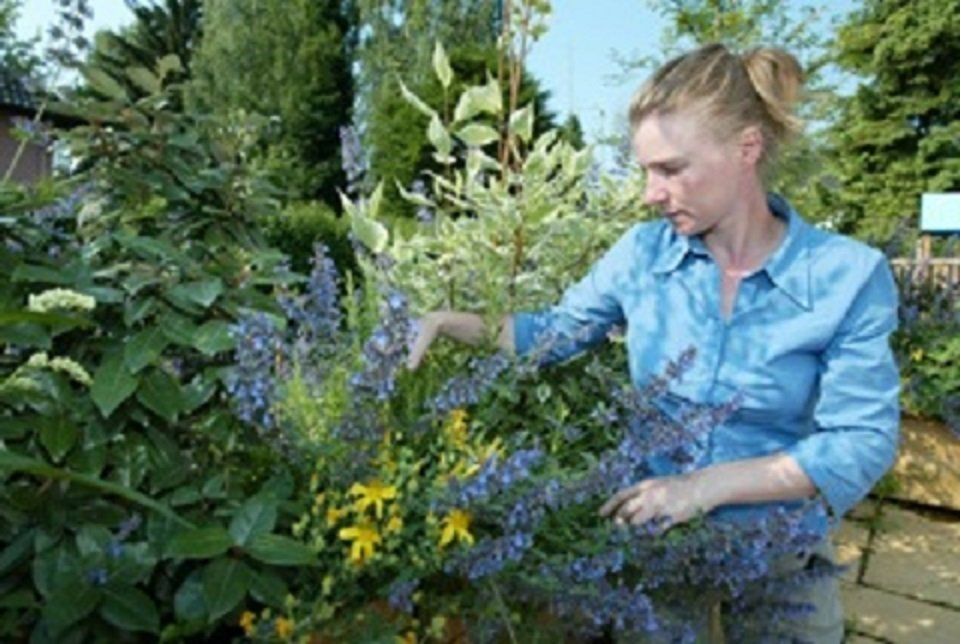 Ein Vortrag von Landschaftsgärtnerin Dipl.-Ing. Jessica Pohl - © Bildrecht: Jessica Pohl