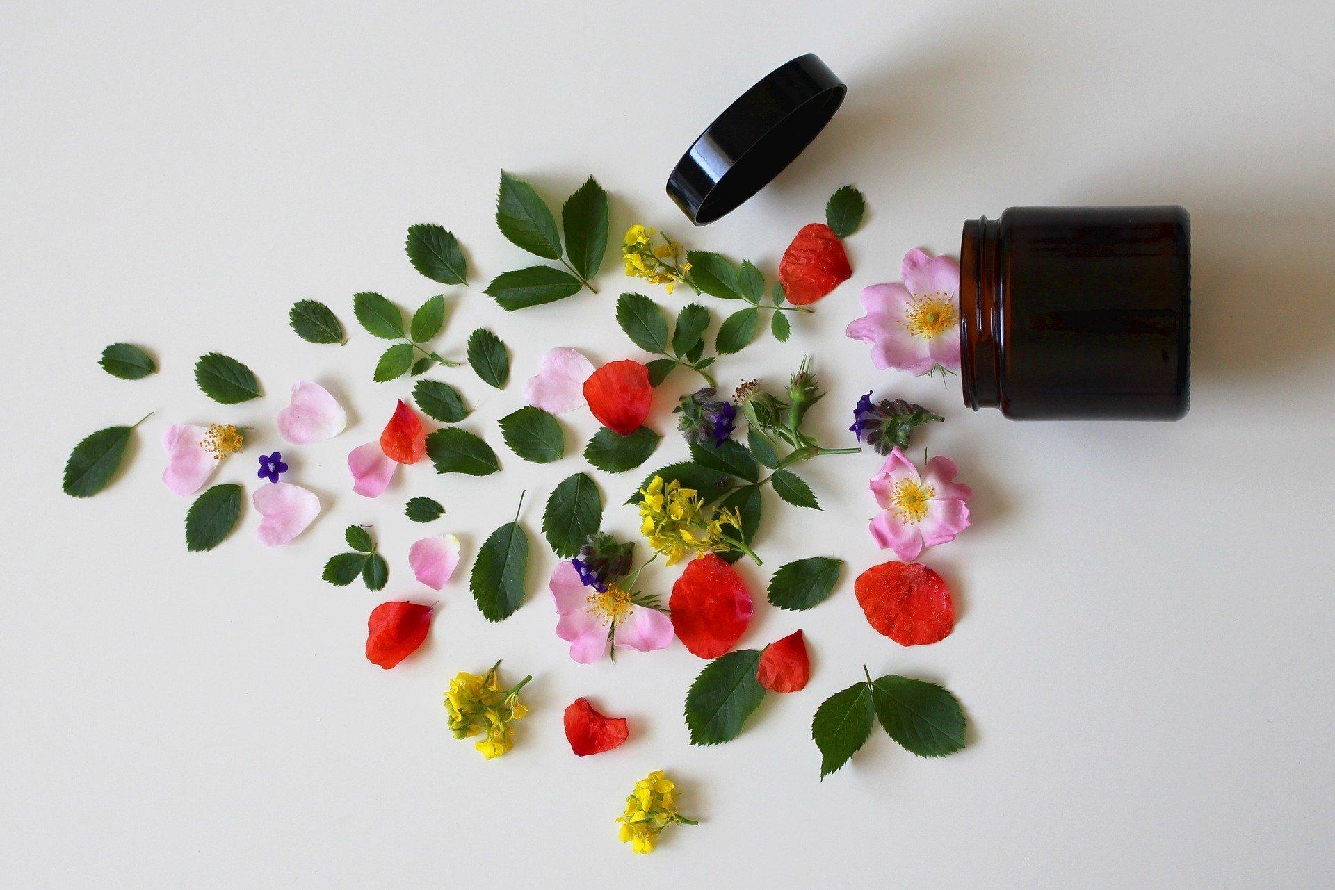 Aktiv in Almoshof: Naturkosmetik aus heimischen Pflanzen - © pixabay