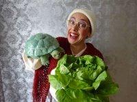 Bild zu Die Schildkröte hat Geburtstag