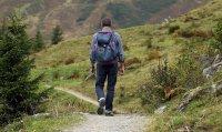 Bild zu Samstagswanderungen: Hinauf zum Hirtenweg