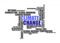 Bild zu Klimawandel und Menschenrechte