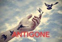 ANTIGONE von Sophokles - OFFENE PROBEN!!! Eintritt frei