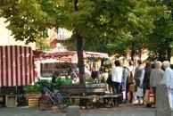 Wochenmarkt Palmplatz