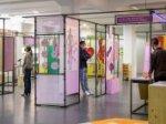Online-Kurzführung durch die Wechselausstellung