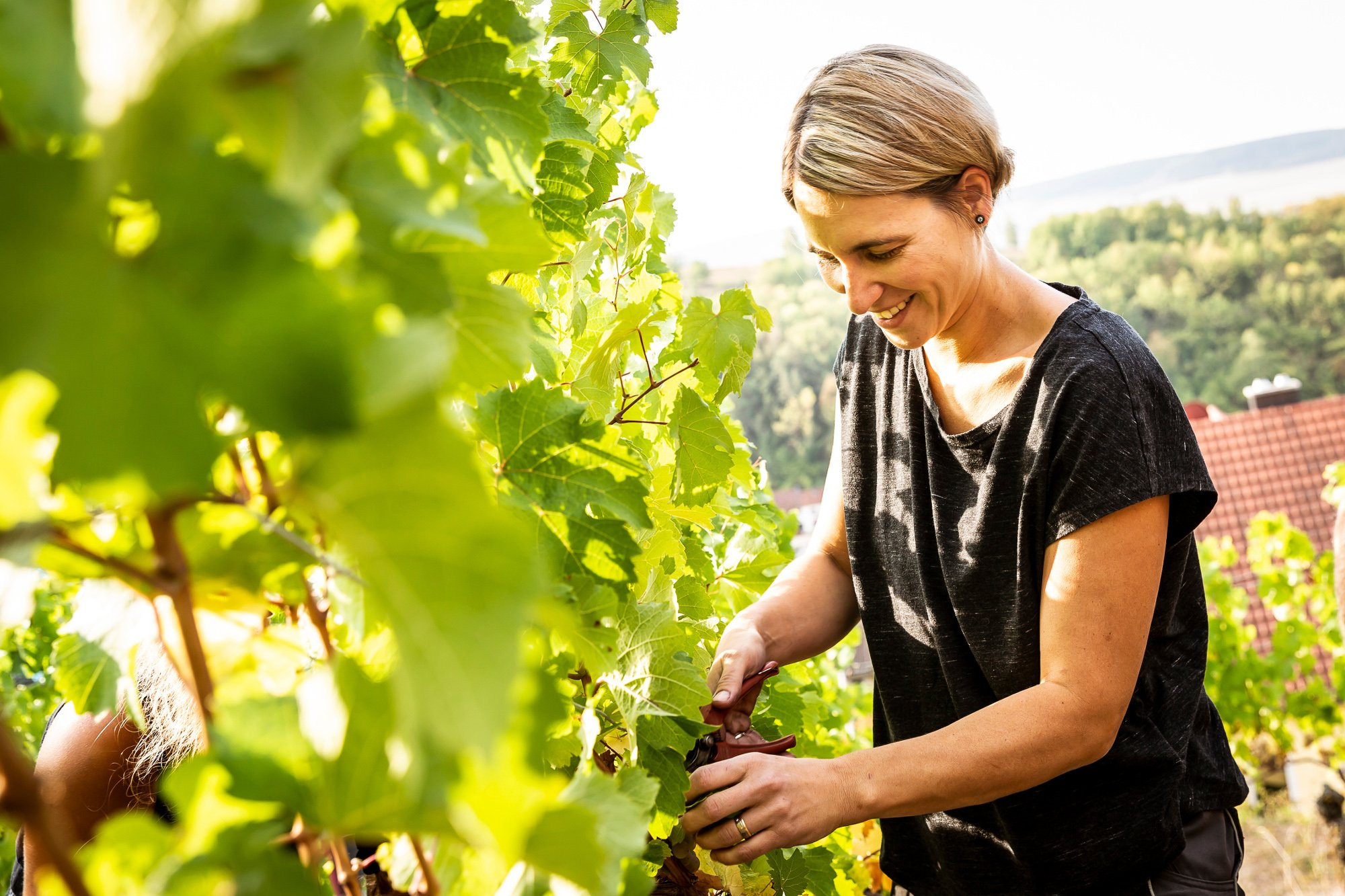 Wein Wissen ist Weiblich  © Christine Pröstler