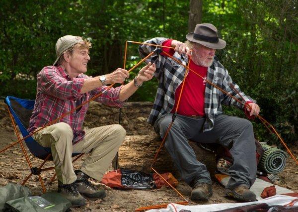 Picknick mit Bären - © © Alamode Film