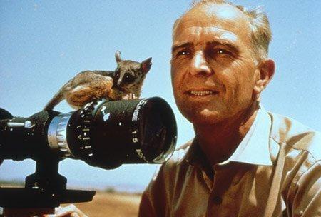 Serengeti darf nicht sterben - © © OKOPIA KG / GLOBUS - FILM
