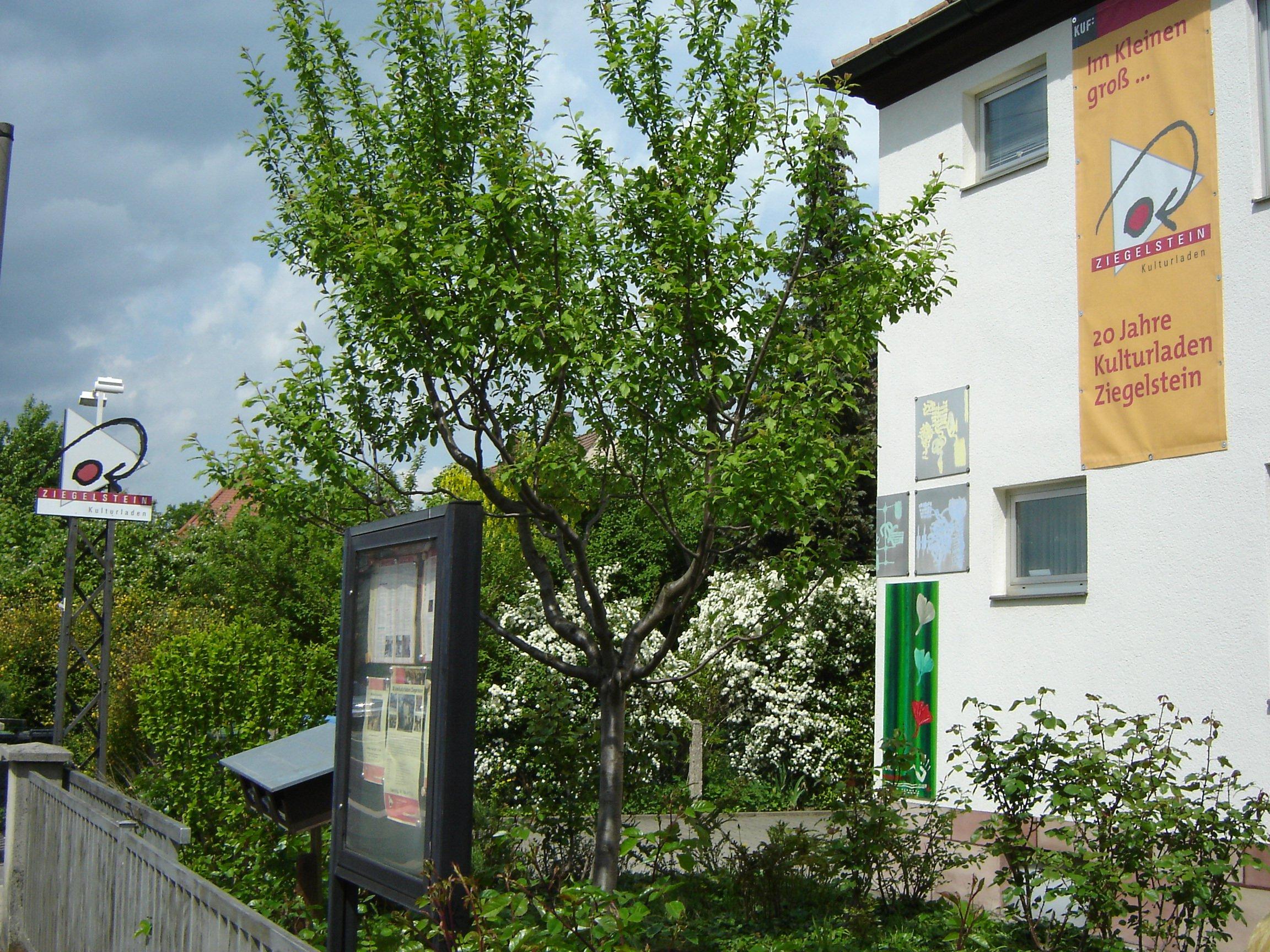 Café Litfaßsäule: Café Litfaßsäule - © Kulturladen Ziegelstein