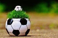 FUSSBALL IST oder was sie schon immer über Fußball wissen (oder nicht wissen) wollten