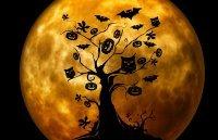 Halloween im turmdersinne © Turmdersinne gGmbH