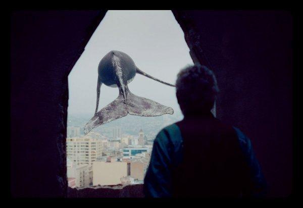Los Versos del Olvido - Im Labyrinth der Erinnerung - © Film Kino Text