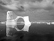 Wilde Arktis - im Reich der Eisbären
