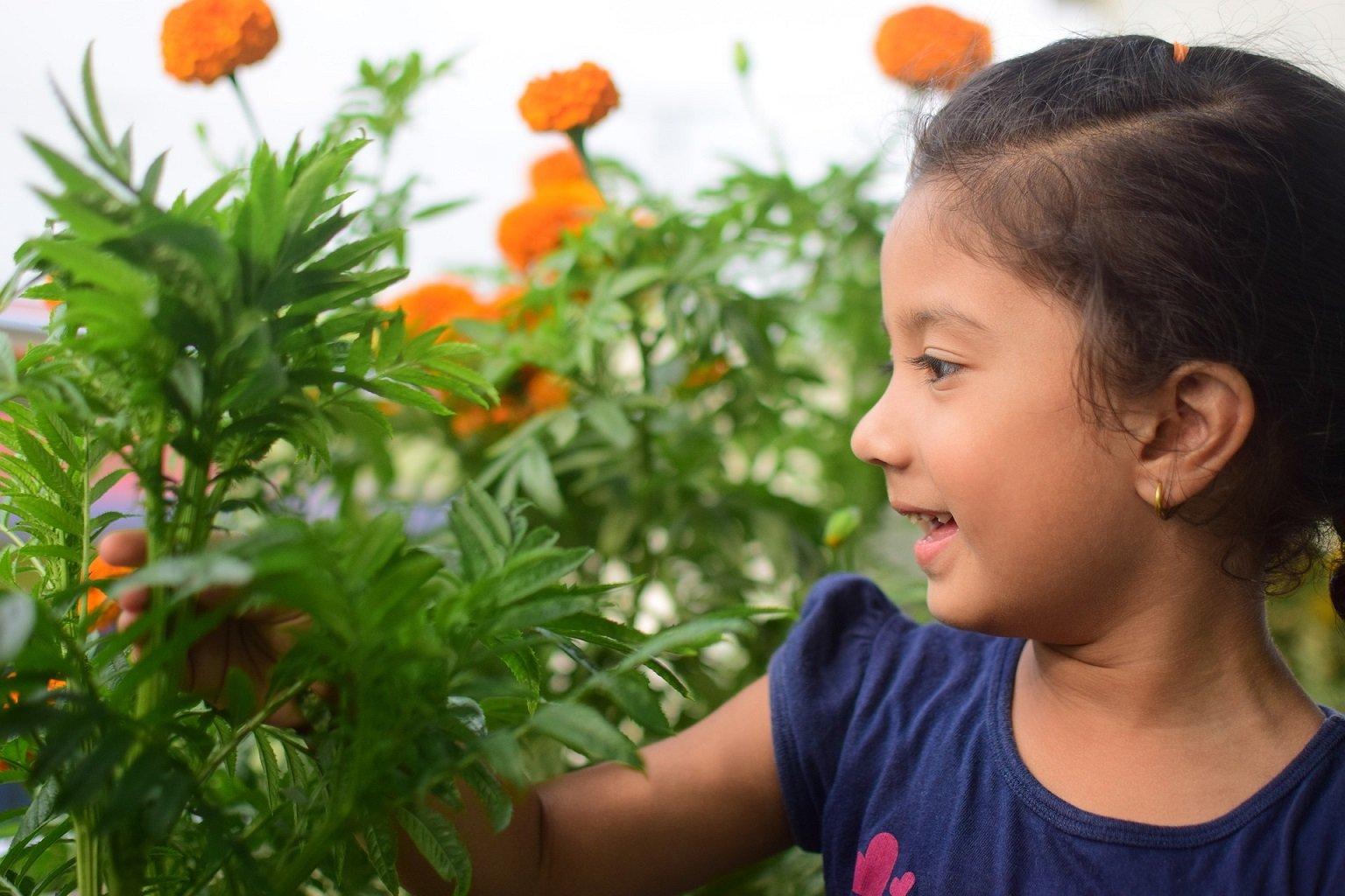 Nature Kids (6 bis 12 Jahre) - © Pixabay