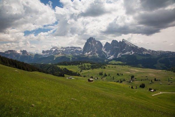 Südtirol – Unterwegs zur Seiser Alm zur Zeit der Alpenrosenblüte - © Veranstalter