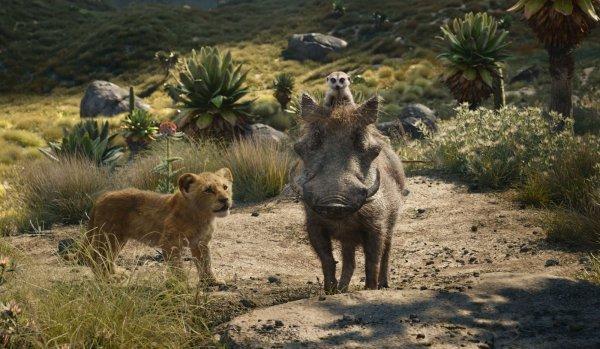 Der König der Löwen - © Walt Disney