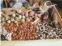 Bild zu Alte Nutzpflanzen - Saatenmarkt