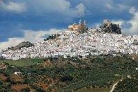 Bild zu Bezauberndes Andalusien